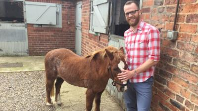 Ferne and Rory's Vet Tales - Annie The Horse