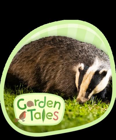 CBeebies Garden Tales Episodes