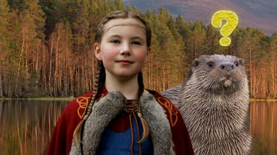Gudrun: The Viking Princess - Wildlife Quiz