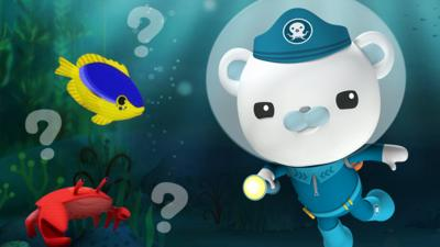 Octonauts - Creature Quiz