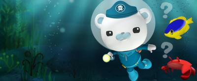 Barnacles is diving and is trying to identify under sea creatures for the Octonauts creature quiz.