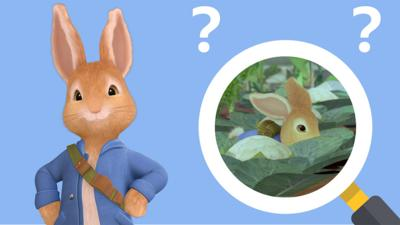 Peter Rabbit - Peter Rabbit Hide and Seek