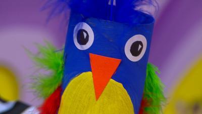 Swashbuckle - Parrot Pal