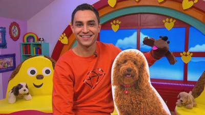 CBeebies House - Make a Waffle Doggy sock puppet