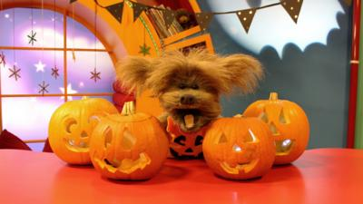 CBeebies House - Your spooky pumpkin pictures