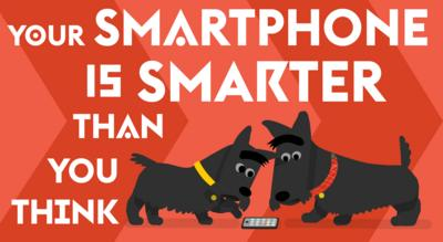 Two Scottie dogs look at a mobile phone