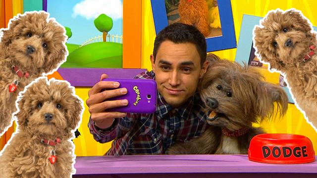 You And Your Wonder Pet Cbeebies Bbc