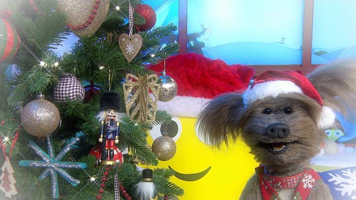 Where Are You Christmas.Cbeebies House Where Are You Christmas