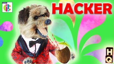 CBBC HQ - Hacker's Profile