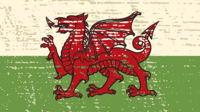 Blue Peter - Quiz: Are you a St David's Day expert?