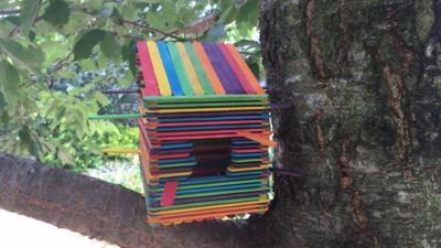 Blue Peter - How to make a bird house out of lollipop sticks