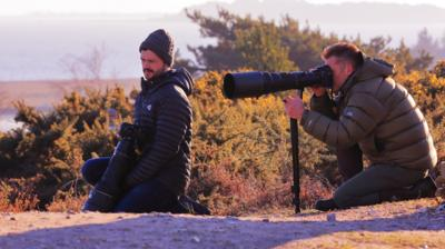 Blue Peter - Be a wildlife photographer!