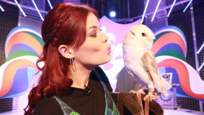Blue Peter - In case you missed it...