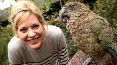 Naomi's Nightmares of Nature - Nightmares of Nature: Cheeky Animals