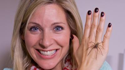 Naomi's Nightmares of Nature - Nightmares of Nature: Creepy Crawlies