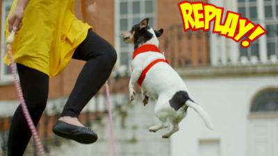 Officially Amazing Goes Bunkers - Is that... a skipping dog?