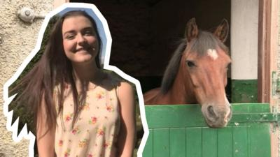 Dani's Castle - Kaitlyn's Guide to Owning a Horse