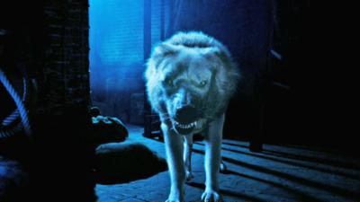 Wolfblood - Wolfbloods' Brave New World