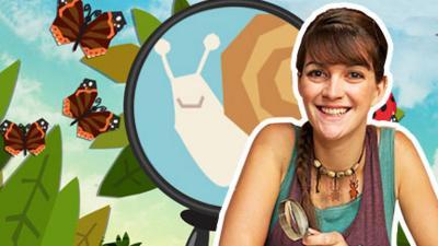 Minibeast Adventure with Jess - Minibeast Spotter