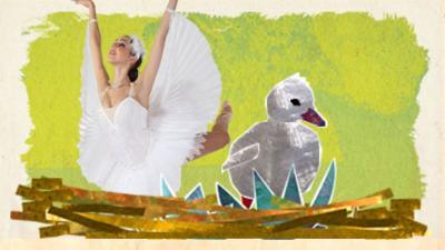 Dancing Beebies - The Swan Queen's costume