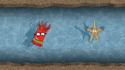 Sally the starfish and Andrew the anemone from Old Jack's Boat: Rockpool Tales in a sandy tunnel.