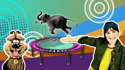 Deefa the dog and Cindy from Take Five with an elephant on a trampoline.