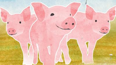 Dancing Beebies - The Three Little Pigs