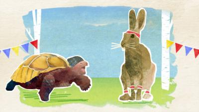 CBeebies Tortoise and the Hare - Tortoise And The Hare