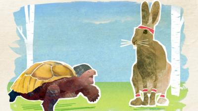 CBeebies Tortoise and the Hare - Ten facts about tortoises and hares