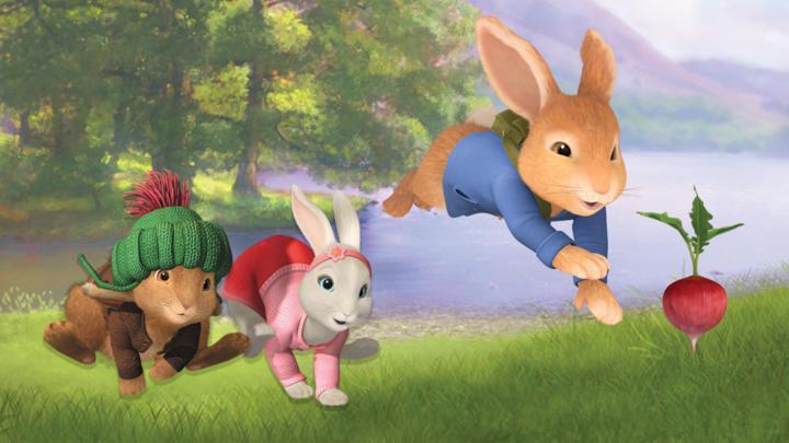 Peter Rabbit Hop To It