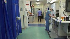 general hospital gv