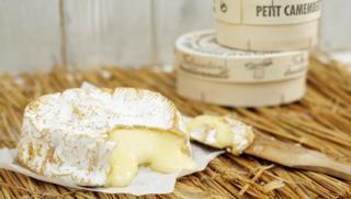 Taste Cheese