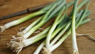Spring Onion Recipes Bbc Food