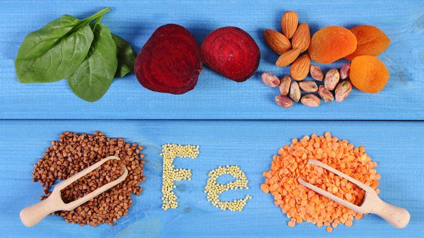 Conheça os efeitos das dietas calóricas no documentário inédito do BBC Earth