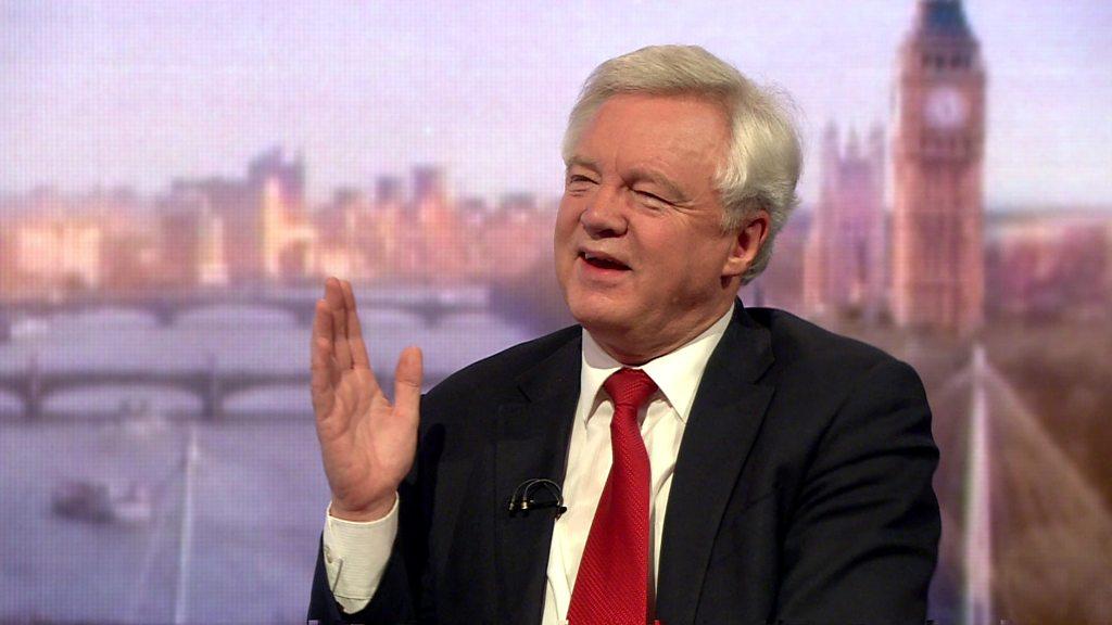 EU deal not binding - David Davis