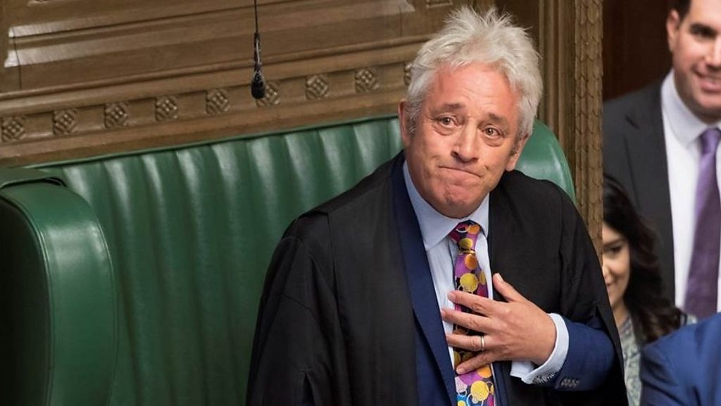 Commons Speaker Bercow to stand down