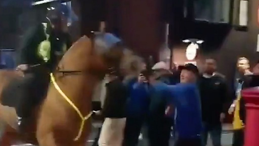 Portsmouth v Southampton: Horse punched by fan amid disorder