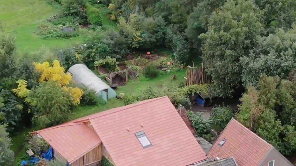 Dutch farm mystery: Father held as police unpick secret farm  sect