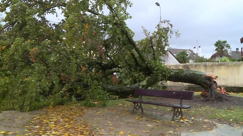 Storm Amélie leaves thousands without electricity in France