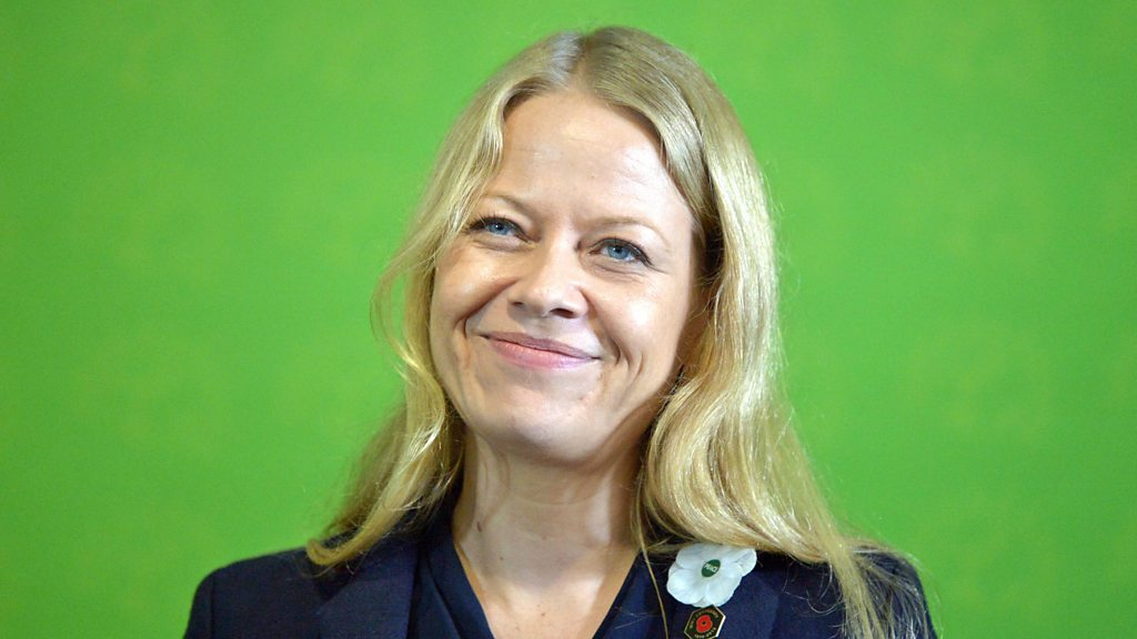 General election 2019: Green Party pledges £100bn a year for climate action
