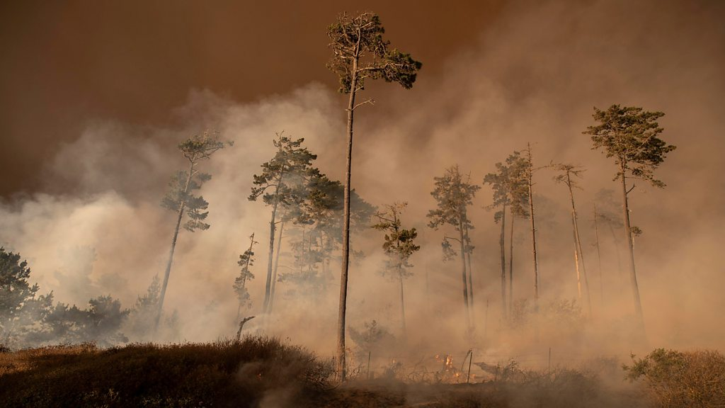 Smoke from US wildfires spreads across country thumbnail