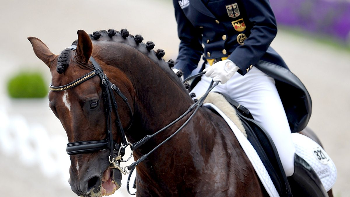 Bbc Sport Olympic Equestrian 2012 3 Day Eventing Dressage