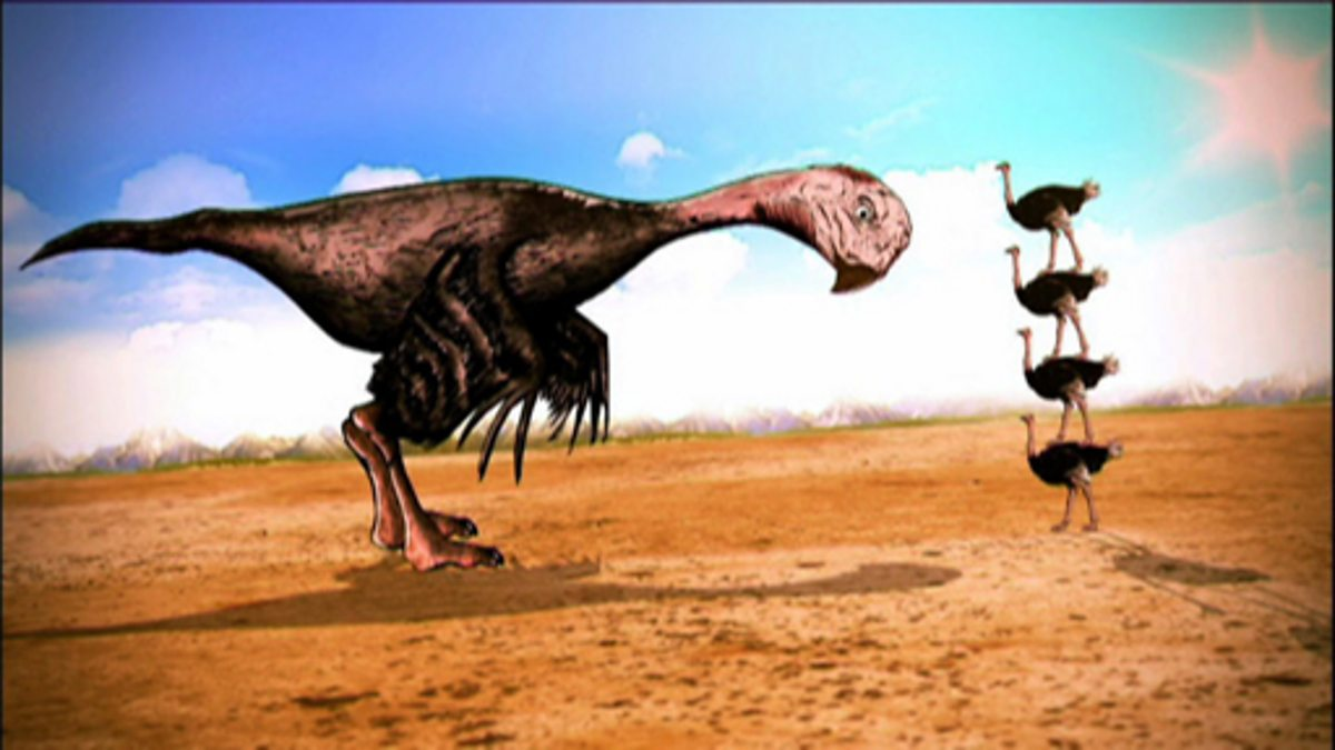 BBC Two - Planet Dinosaur, Gigantoraptor - Inspiration for ...