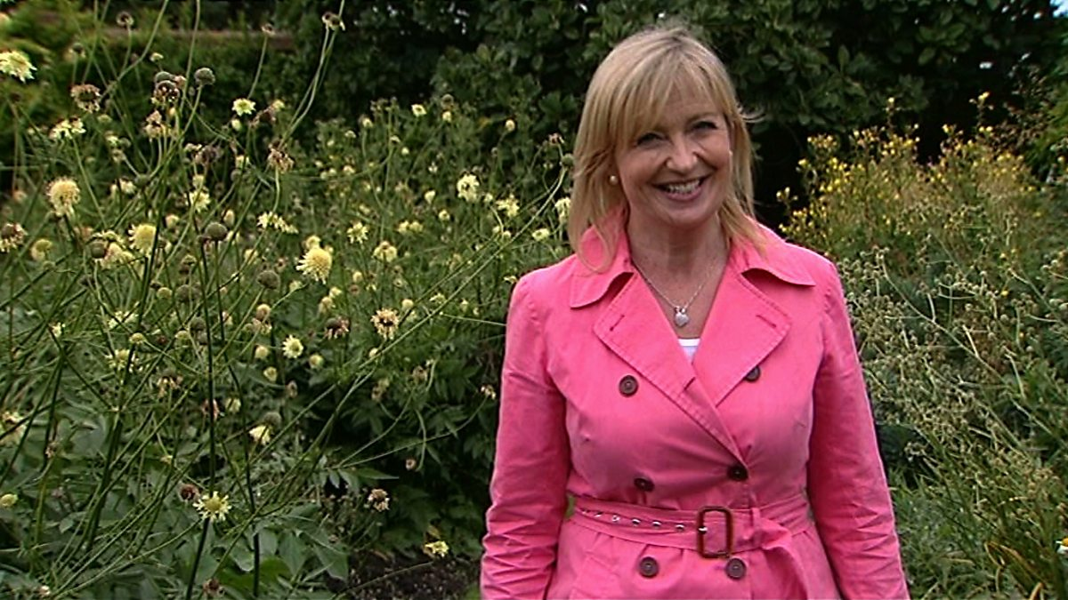 Bbc two the a to z of tv gardening original series the for Gardening programmes on tv