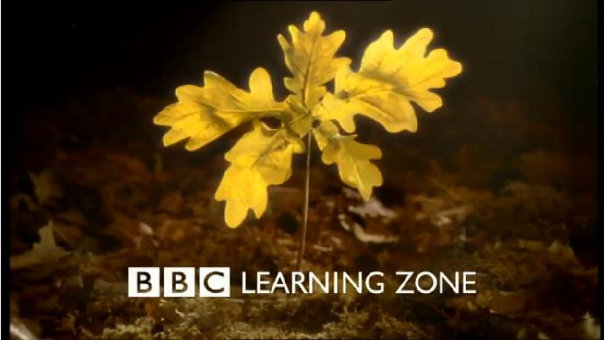 BBC Two - Learning Zone