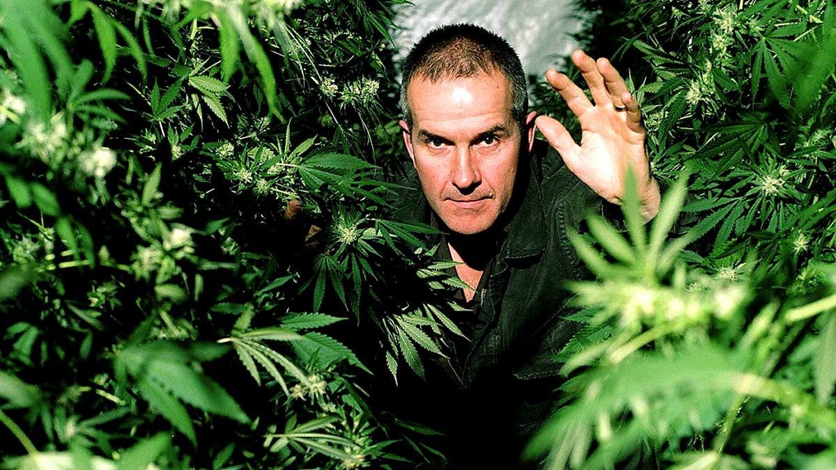 Марихуана фильм от дискавери препарат как марихуана