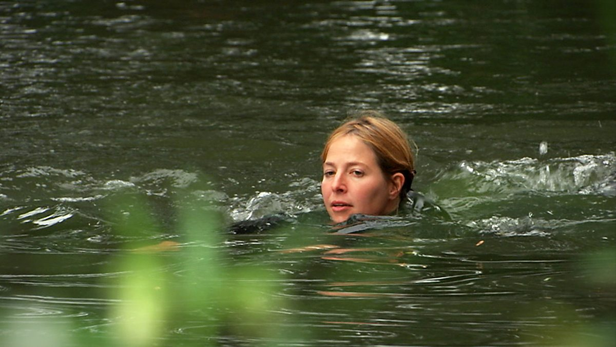 Bbc Four Wild Swimming