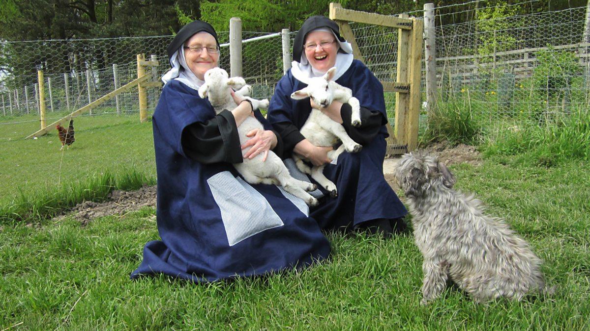 Resultado de imagem para catholic saints animals nuns