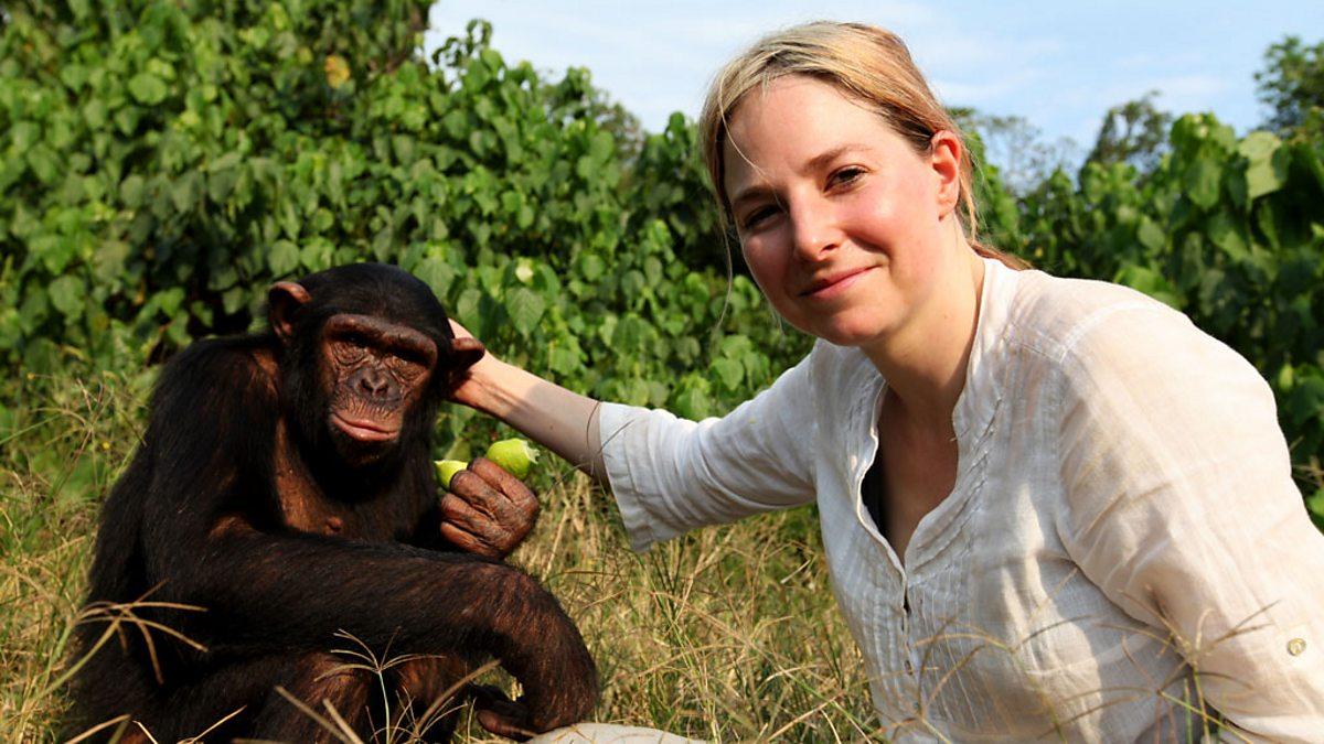 Bonobo as hot as a vindaloo - 2 1