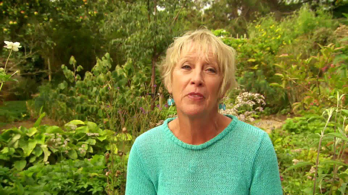 Carol S Garden: Great British Garden Revival, Series 1, Cottage
